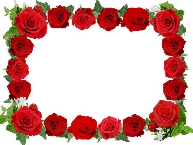 Фото рамки цветы розы