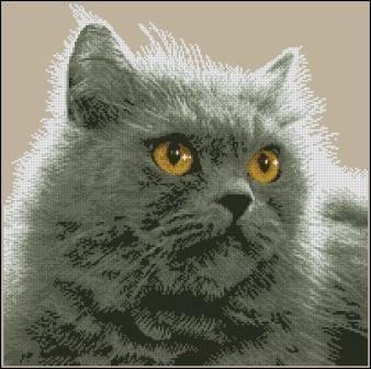Вышивка крестом схемы персидский кот