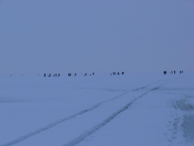 28 февраля 2009 г. Комарово. 63542-2aba0-15531929-m750x740